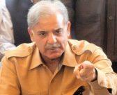 Shehbaz gets bail, LHC orders release
